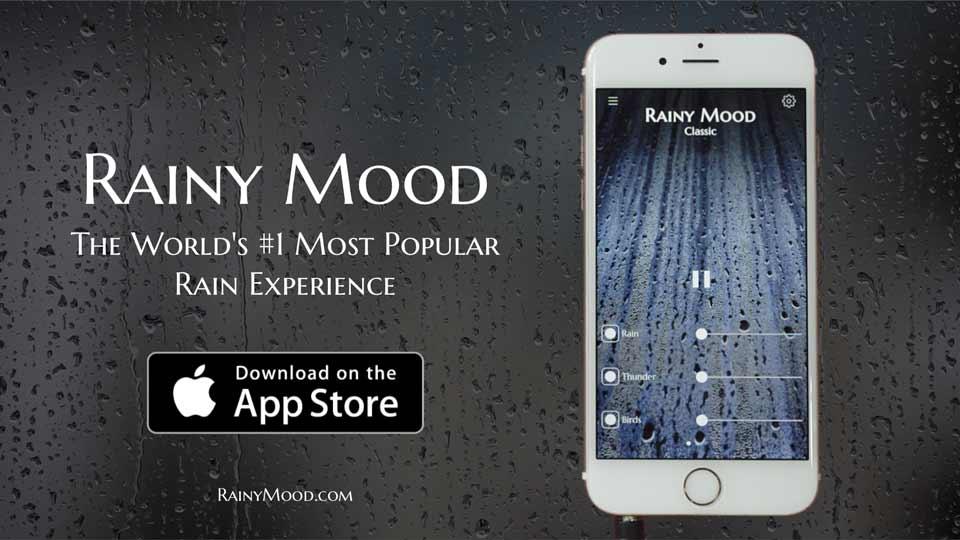 Rainy Mood + Bon Iver (Towers)